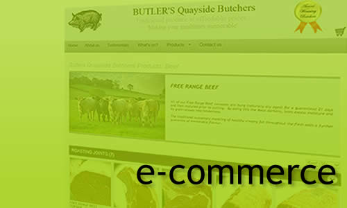 MR Websites e-commerce sites
