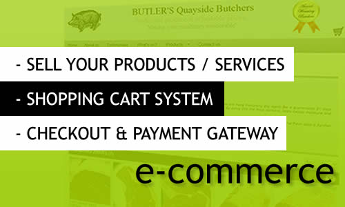 MR Websites: checkout and Payment Gateway, offer your clients to buy and pay online.